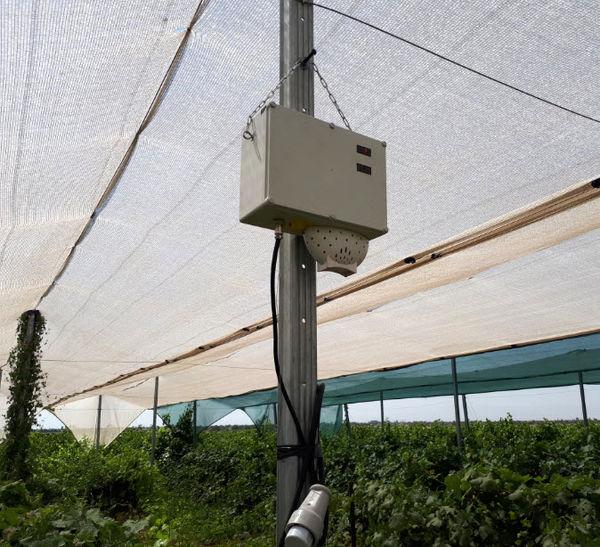 سامانه هواشناسی هوشمند در ایستگاه تحقیقات انگور تاکستان نصب و راهاندازی شد
