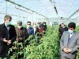 توسعه کشت های گلخانه ای در آذربایجان شرقی ضرورتی اجتناب ناپذیر است