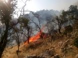آتشسوزی در 2 هکتار از عرصههای جنگلی و مرتعی کوهسار مهار شد