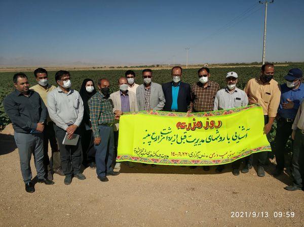 برگزاری روز مزرعه در بشرویه با حضور کارشناسان و کشاورزان