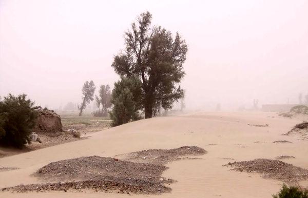 اختصاص 100 میلیارد تومان اعتبار به بخش آب وخاک سیستان وبلوچستان
