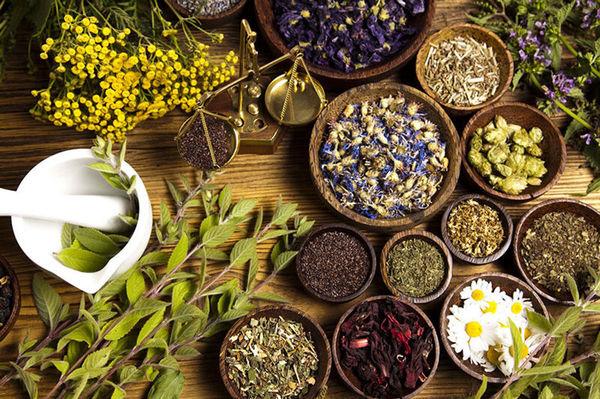 بیش از یک تن بذر گیاهان دارویی در آذربایجان شرقی تولید شد