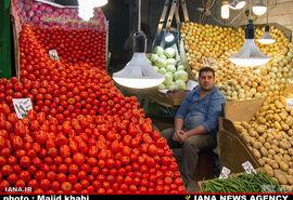 گالری عکس: بازار میوه و ترهبار