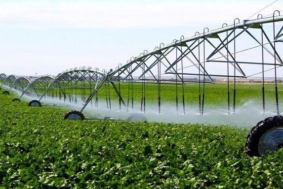 برنامهریزی برای تجهیز 10 هزار هکتار از اراضی قزوین به سامانههای نوین آبیاری