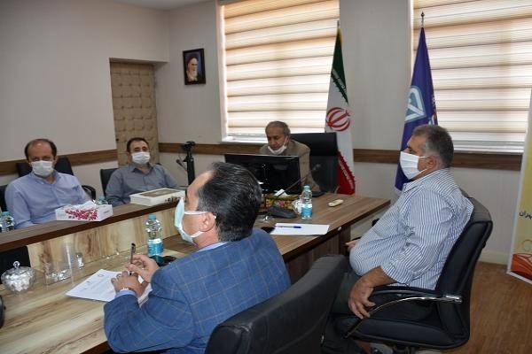 طرح ارتقای کیفیت تخممرغ در استان تهران اجرا میشود