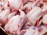قیمت مرغ در بوشهر روند کاهشی شد