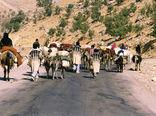 11 طرح عشایری شهرستان در شهرستان  کوهرنگ اجرا می شود