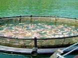 سالانه ۴۲ تن ماهی قزلآلا رنگینکمان در قروه تولید میشود