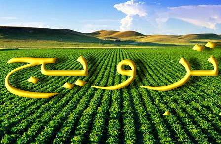 فارس، رتبه نخست آموزش ترویج کشاورزی در کشور