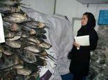 طرح تشدید کنترل و نظارت بهداشتی دامپزشکی ویژه ماه مبارک رمضان در استان به اجرا در آمد