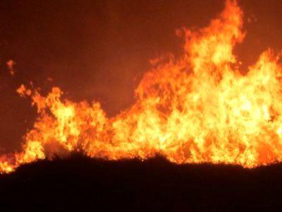 آتش سوزی در مزارع افزر قیروکارزین مهار شد