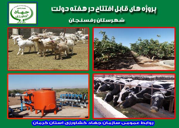 بهرهبرداری از 7 طرح زیر بنائی کشاورزی و دامپروری در شهرستان رفسنجان در هفته دولت