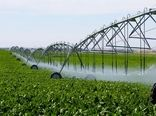 آبیاری تحت فشار راهکار مناسبِ بهره وری آبِ کشاورزی در اصفهان است