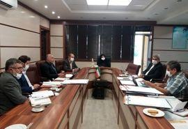 27000 هکتار از عرصههای  کشاورزی استان قزوین تعیین تکلیف شد