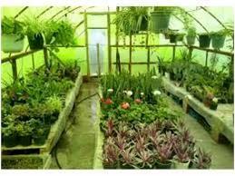 صدور الکترونیک 100 مجوز گلخانه در ساری