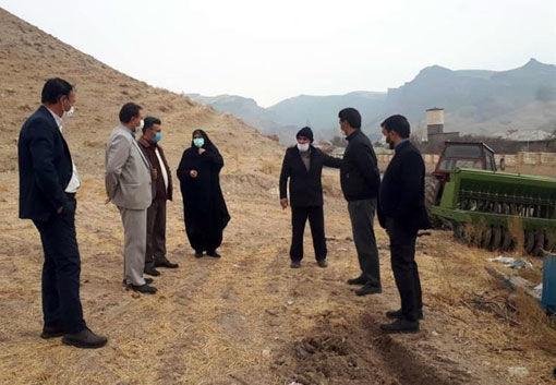 رفع تداخل 3500 هکتار از اراضی کشاورزی شهرستان هشترود