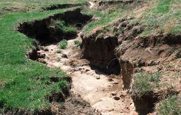 پخش رایگان برنامههای مقابله با آلودگی و تخریب خاک، تکلیف جدید صدا وسیما