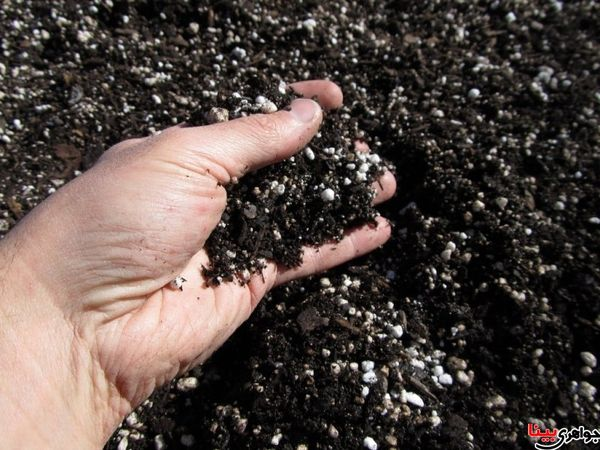 افزایش امنیت غذایی با طبقه بندی و شناسایی خاکها