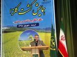 افزایش 27 درصدی سطح زیر کشت کلزا در آذربایجان غربی در سال زراعی 97-98