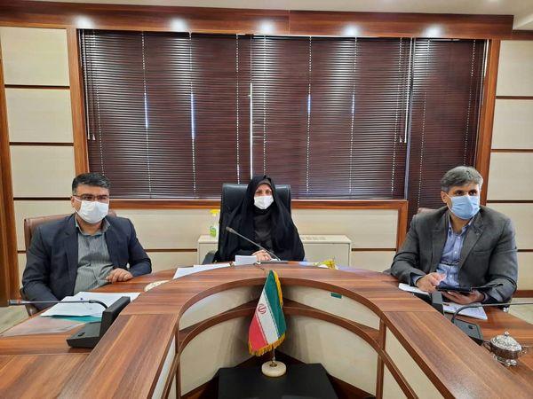 199 هزار هکتار از اراضی کشاورزی استان قزوین به زیر کشت محصولات پائیزه میرود