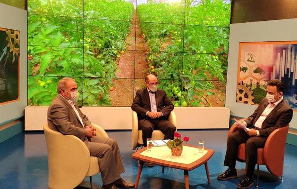 پرداخت 7 هزار میلیارد ریال تسهیلات برای احداث گلخانه در آذربایجان شرقی