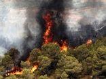 پیشگیری از آتشسوزی با حضور مسئولانه در طبیعت