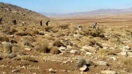 طرح «9 در 99» منابع طبیعی در شهرستان شاهرود اجرا میشود