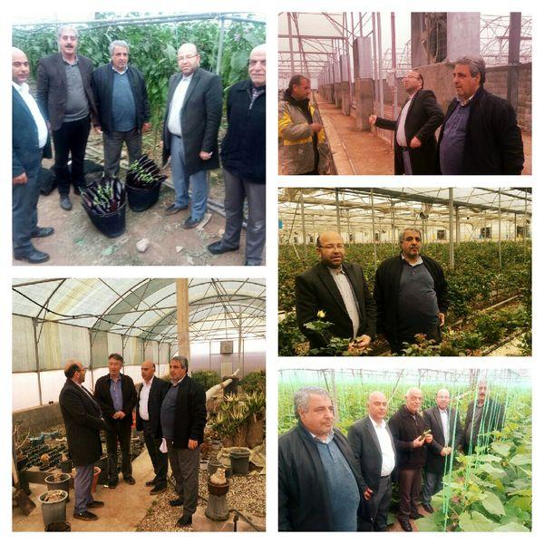 بازدید یک روزه بهره برداران بخش کشاورزی پردیس از گلخانه های ورامین و پیشوا
