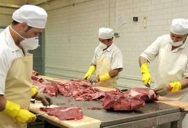 بهبود تولید مواد پروتئینی در خراسان رضوی