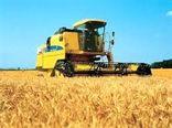 موفقیت طرح افزایش طرح گندم بنیان ایران در پلاتفرم سطح کشوری در این منطقه