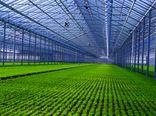 صدور 100 پروانه تاسیس شهرک های کشاورزی از ابتدای امسال