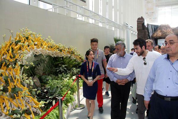 وزیر جهاد کشاورزی از نمایشگاه باغبانی پکن ۲۰۱۹ بازدید کرد