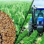 اختصاص 2 هزار میلیارد تومان تسهیلات بانکی برای تهیه و تدارک نهاده های کشاورزی