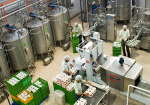 خسارت ۵۰ درصدی صنایع بخش کشاورزی خراسان شمالی از ناحیه کرونا