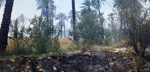 خطر حریق در کمین پارکهای جنگلی و بوستانهای روستایی مهدیشهر