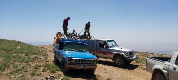 بیش از 5هزارهکتار از سطوح شهرستان دماوند تحت دیدبانی ملخ بومی قرار گرفت