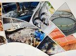نخستین نمایشگاه تخصصی شیلات و صنایع وابسته در استان بوشهر برگزار می شود