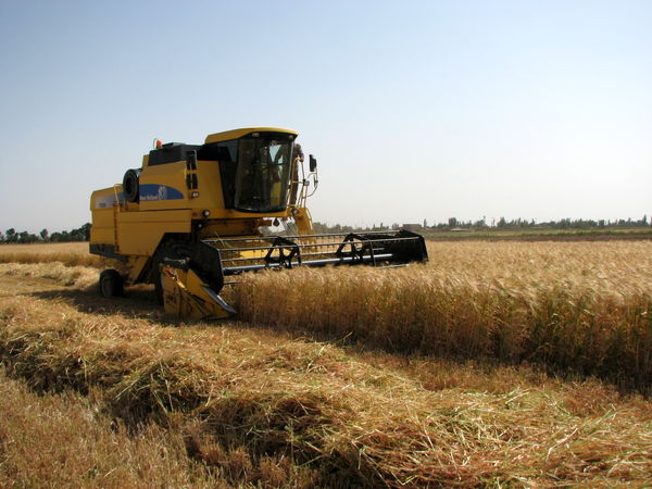 تشکیل36 پرونده پلاک گذاری ماشین آلات کشاورزی در شهرستان البرز