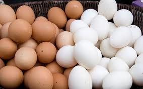 20 پرونده تخلف امتناع از عرضه تخممرغ در استان سمنان تشکیل شد