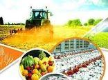 ترزیق 110 میلیارد ریال اعتبار به بخش کشاورزی فارس