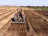 کردستان به استقبال کشت غلات پاییزی میرود