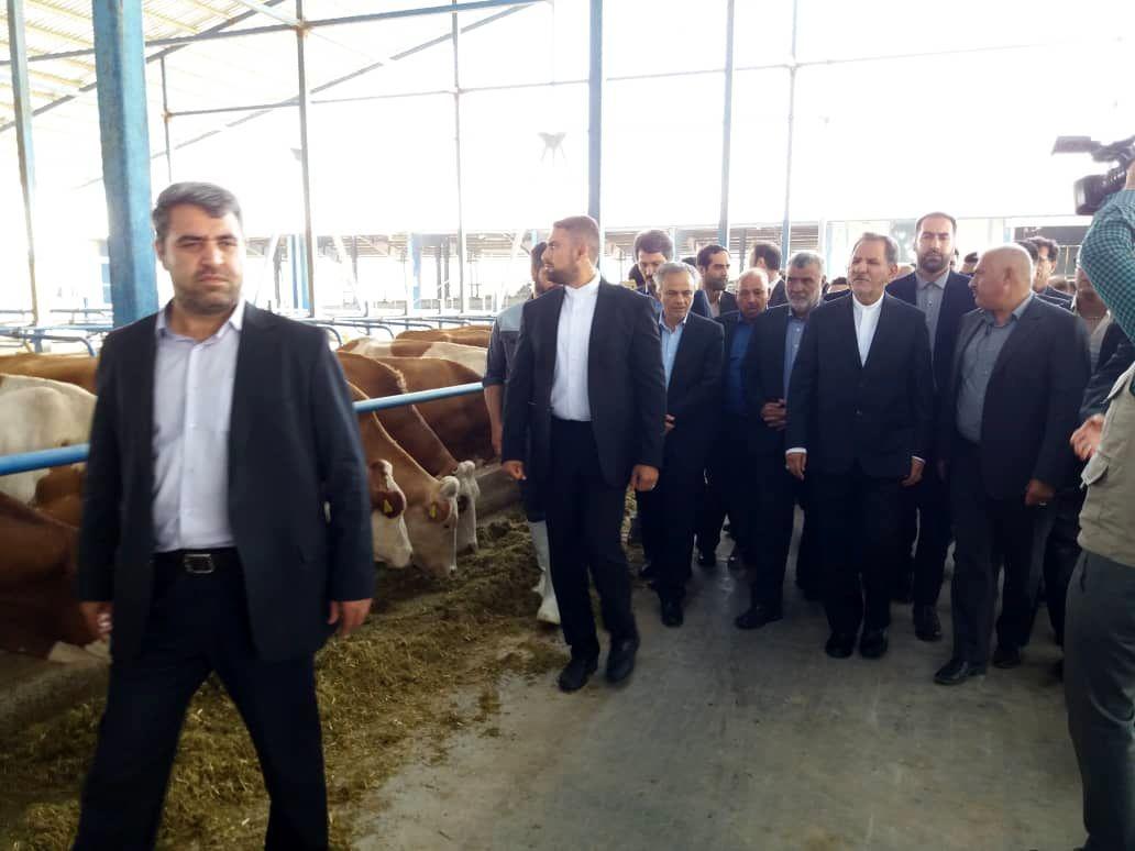 بازدید و افتتاح پروژه های کشاورزی استان خراسان رضوی توسط وزیر جهاد کشاورزی