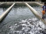سه هزارو  100 تن ماهی در  شهرستان کیار تولید شد