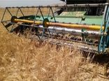 پیشبینی برداشت بیش از 8 هزارتن گندم از مزارع شهرستان خانمیرزا