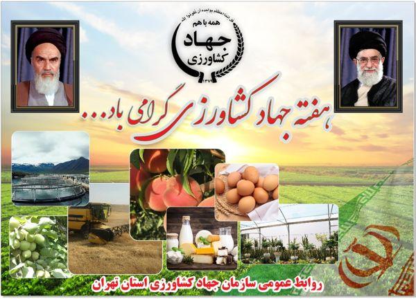 کشاورزی استان تهران؛ پویا در جهش تولید محصولات کشاورزی و تامین کننده امنیت غذایی کشور