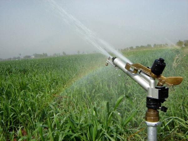 950 هکتار سامانه نوین آبیاری در  اراضی  کشاورزی شهرستان  تاکستان اجرا شد