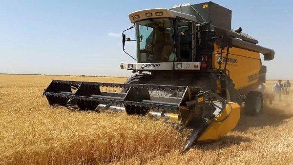 کاهش ریزش دانه های طلایی با اجرای طرح کنترل فناوری برداشت