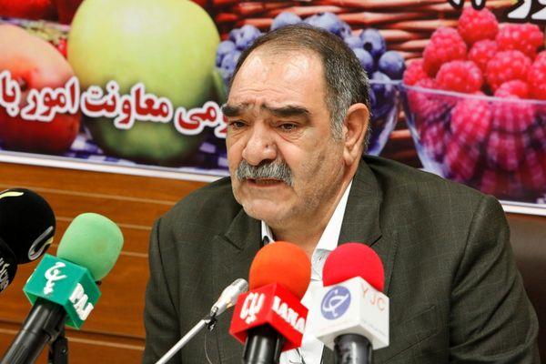ارزآوری 97 میلیون دلاری صادرات کیوی ایران